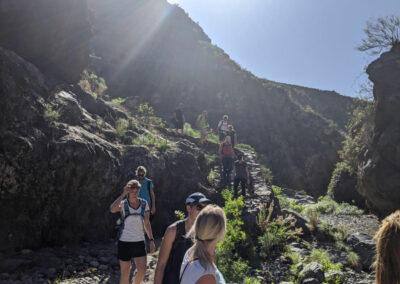 Wander auf Teneriffa